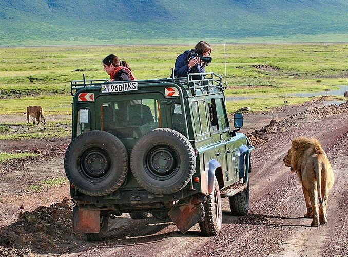 Extraordinary Tanzania Volunteer Safari Trips