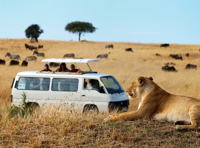 Lets Go Kenya 14 Days | Culture Immersion | Volunteering & Mind-blowing Safaris