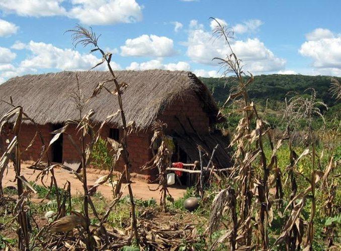 TANZANIA: Community Volunteer Program