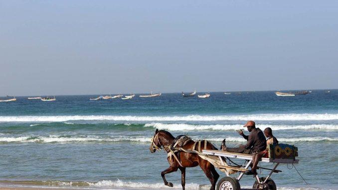 Visit Senegal