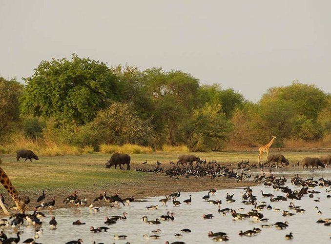 11 Reasons to Visit and Tourist Attractions in Chad