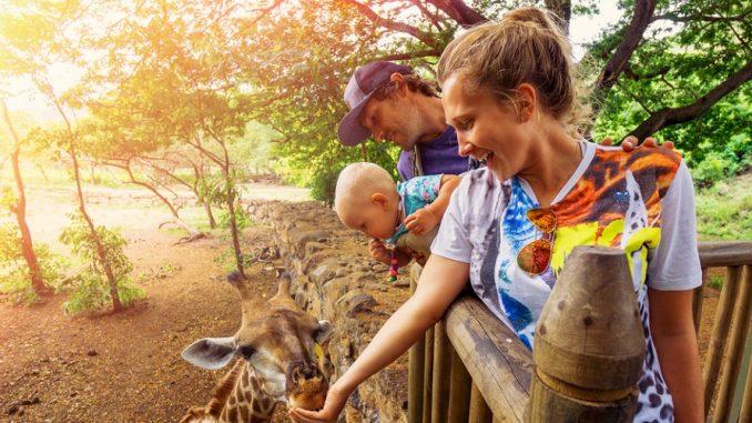 Rwanda Family Volunteer Safaris