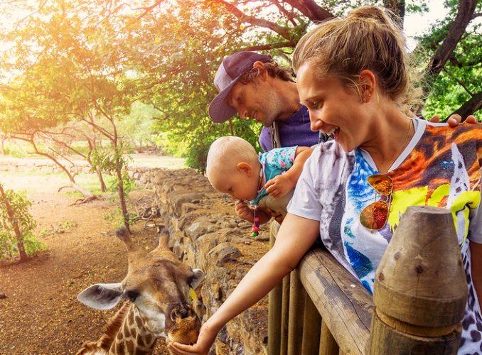 RWANDA: Family Volunteer Safaris