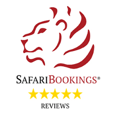 Represented on safari-bookings