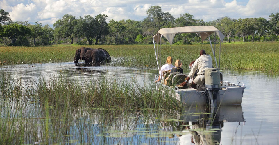Afternoon Boat Ride Okavango Delta Botswana